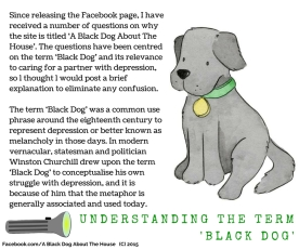 What is a black dog